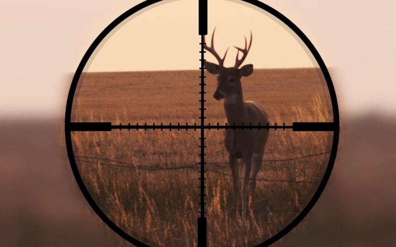 top-scope-for-deer-hunting-review
