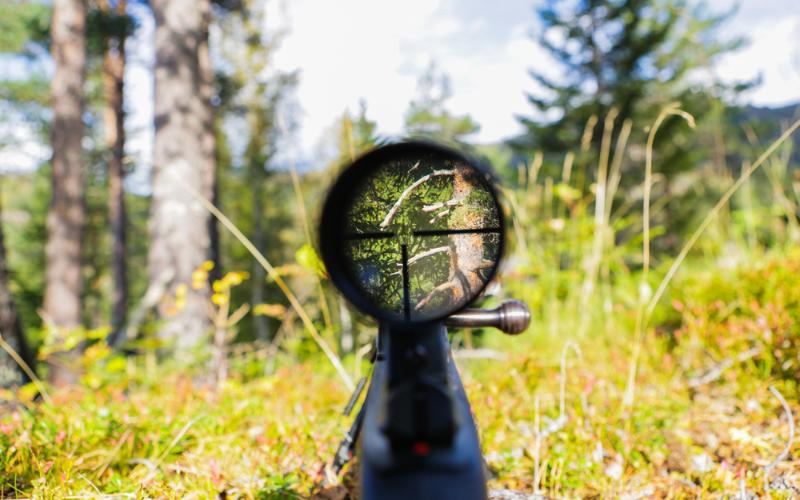 vortex optics diamondback second focal plane riflescopes review