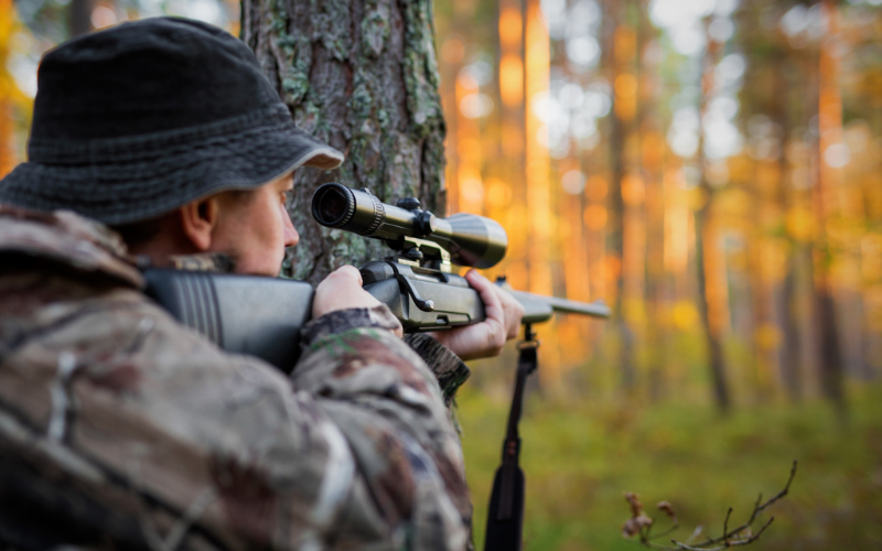 how to sight a rifle scope